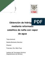 tesisUPV2623.pdf