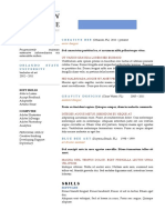 Chronological-resume-template-4.docx