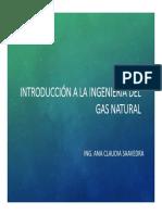 Presentacion 4. Propiedades Quimicas Del Gas Natural