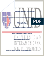 Universidad Inter American A Para El Desarollo