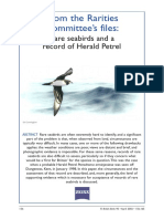 Rare Seabirds and a Record of Herald Petrel