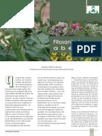 62_fitosanitarios_abejas