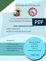 Informe de Densidad de Campo