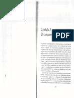 cap2ececesperzaglr.pdf