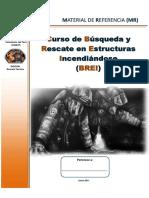 BREI - MR-1-1.pdf