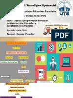 DISEÑO Y PROGRAMACIÓN CURRICULAR EN ATENCIÓN A LA DIVERSIDAD Y ADAPTACIONES CURRICULARES.pdf