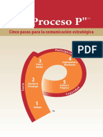 P Process Brochure Spanish