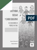 Efectividad Escolar