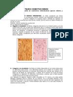 1367417888.TEJIDO CONECTIVO DENSO, SINOVIAL Y CARTILAGO.pdf