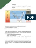 314921458-Series-de-Reaccion-de-Bowen.docx