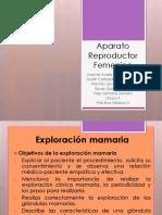 Aparato Reproductor Femenino 2 (1) [Autoguardado]