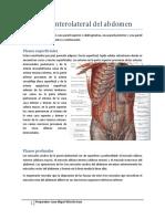 Pared anterolateral del abdomen.pdf