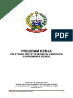 Program Kerja Ponek 2017