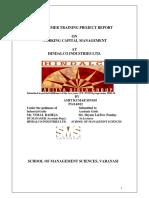 29213354-Working-Capital-Management.pdf