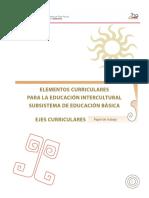 INTERCULTURALIDAD elementos curriculares.pdf