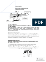 Instructiuni pentru dresaj canin.pdf