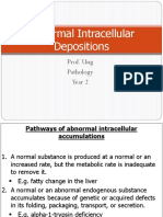 10. Abnormal Intracellular Depositions