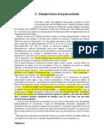 Práctico Nº09 Principios Básicos de La Poda