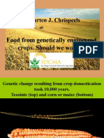 Food From Genetically Engineered Crops (1)