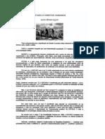 Texto - Estado e Direitos Humanos - IED.doc