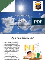 356774496 Heat Stroke Pptx