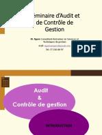 Audit-controle de Gestion