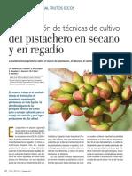 Pistacho 2017