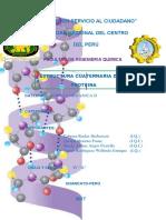 informe-de-proteina final.docx