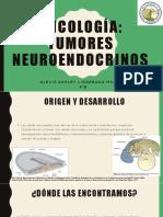 Oncología, tumores neuroendocrinos
