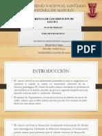 Universidad Nacional Santiago Antunez de Mayolo-gerencia