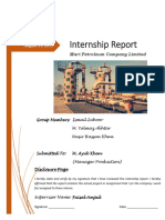 Internship report Mari Petroleum