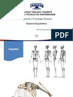 ANATOMIA 5.pdf