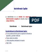 Electroforesis_Capilar_2011.pdf