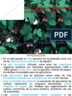 MIP Algodonero(30)