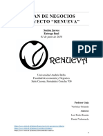 Renueva Informe Final (2)