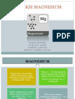 Koreksi Magnesium