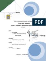 V SEMINARIO DIRECCIÓN DE PROYECTOS 2018.docx