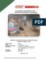 INFORME DE LAS PROPUESTAS DE LAS ACCIONES APLICATIVAS.docx