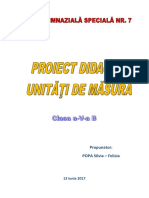 final proiect didactic_ok.docx