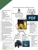 """Evidencia 3 Infografía """"Estrategia global de distribución"""".docx"""