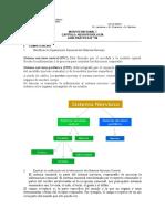 Practica N8 Nuerofisiologia II Hecha