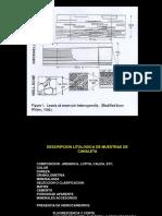 CARACT. TEXT DE SEDIMENT-GRANULOMETRIA-MORFOSCOPIA-REDOND-COMP. MINER-POR Y K.pdf