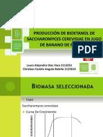 Producción de Bioetanol a Partir de Banano de Rechazo