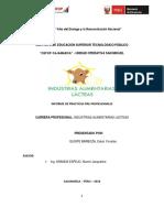 Informe de Practicas pre prpfesionales 2018. Yonatan Quispe.