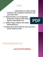 PERTEMUAN KE XII.pptx