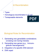 Recombination of Dna