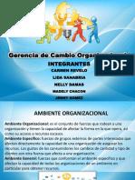 Cap3. Cambio Organizacional