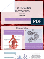 2 Enfermedades anorrectales.pptx