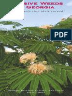 Invasive Weeds in Georgia