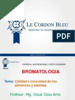 t2 Osso Bromatología